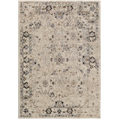 Broadview Multi-Colored Area Rug Rug Size: Rectangle 52 x 76