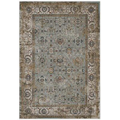 Hover Vintage Sky Blue/Brown Area Rug Rug Size: Rectangle 8 x 10