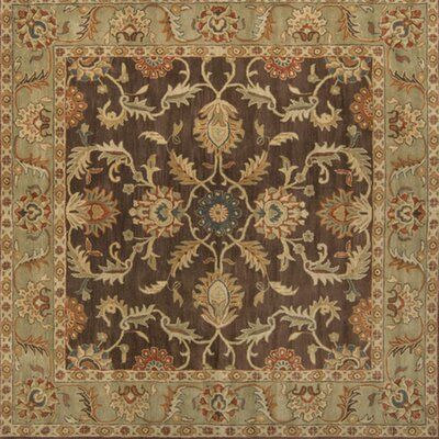 Waterston Floral Brown Area Rug Rug Size: Square 99