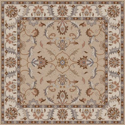 Waterston Papyrus Area Rug Rug Size: Square 99