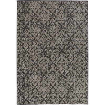 Eagon Black Indoor/Outdoor Area Rug Rug Size: 67 x 96