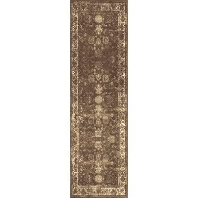 Lambton Brown Area Rug Rug Size: Runner 27 x 73