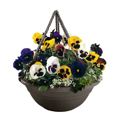 Coleshill Plastic Hanging Planter Color: Peppercorn