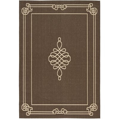 Alderman Chocolate / Cream Indoor / Outdoor Area Rug Rug Size: Rectangle 8' x 11'2