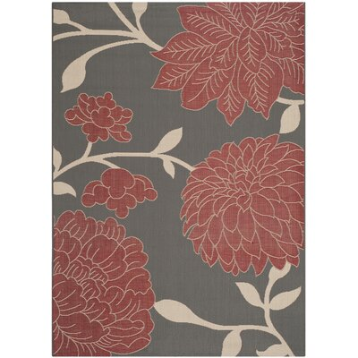 Octavius Anthracite / Beige Indoor / Outdoor Area Rug Rug Size: 67 x 96