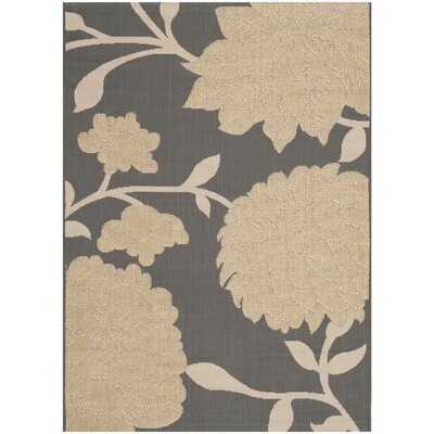 Octavius Anthracite / Beige Indoor / Outdoor Area Rug Rug Size: Rectangle 4 x 57