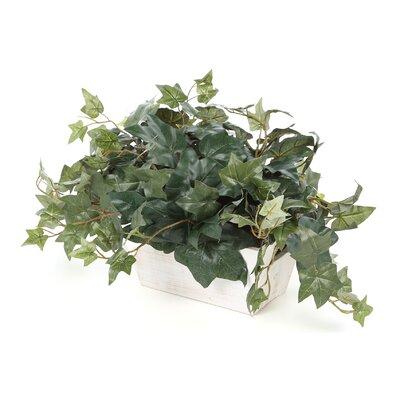 Faux Ivy