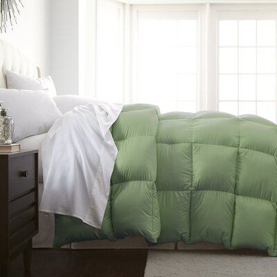 Veedersburg Luxurious Premier Quality Down Alternative Comforter Color: Sage, Size: Full / Queen