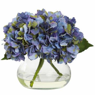 Blooming Hydrangea in Vase