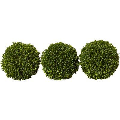 Charlton Home Faux Ball Decor Round Topiary