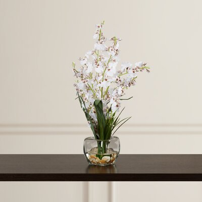Silk White Orchids in Short Oval Vase ADML1059 39216503