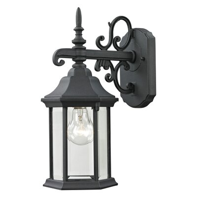 Altagore 1-Light Outdoor Wall Lantern