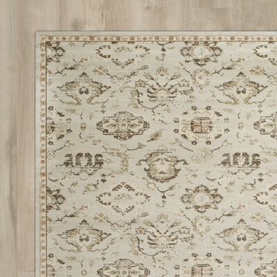 McCabe Grey / Ivory Area Rug