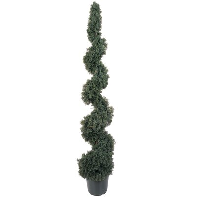 Cedar Spiral Round Tapered Topiary Floor Plant in Pot Size: 48