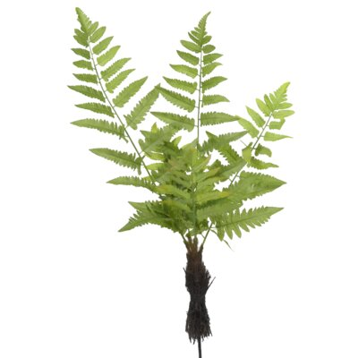 Fern Tree Branch (Set of 2)