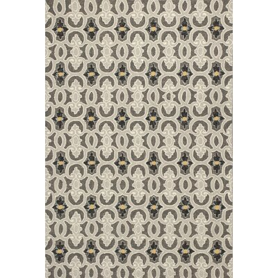 Edinburgh Handmade Charcoal Indoor/Outdoor Area Rug Rug Size: 33 x 53