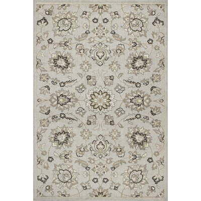 Arcadia Silver Indoor/Outdoor Area Rug Rug Size: 67 x 96