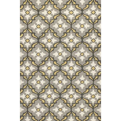 Edinburgh Handmade Gray/Gold Indoor/Outdoor Area Rug Rug Size: Rectangle 76 x 96