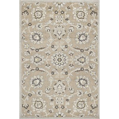 Arcadia Beige/Gray Indoor/Outdoor Area Rug Rug Size: 67 x 96