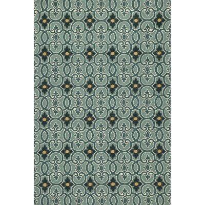 Edinburgh Handmade Teal Indoor/Outdoor Area Rug Rug Size: 33 x 53