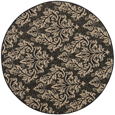 Octavius Black/Cream Indoor/Outdoor Area Rug Rug Size: Rectangle 4 x 57
