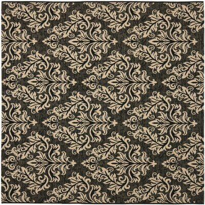 Octavius Black/Cream Indoor/Outdoor Area Rug Rug Size: Square 67
