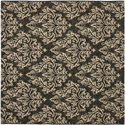 Alderman Black / Creme Indoor/Outdoor Rug Rug Size: Square 67