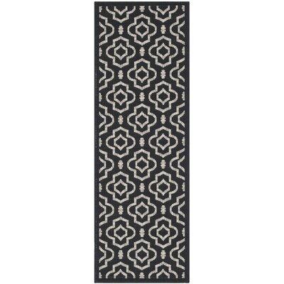 Octavius Black/Beige Outdoor Area Rug II Rug Size: Runner 23 x 67