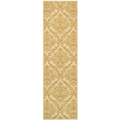 Carriage Hill Hand-Woven Gold Indoor/Outdoor Area Rug Rug Size: Runner 23 x 76
