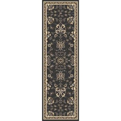 Dark Brown Area Rug Rug size: Runner 22 x 76