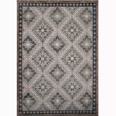 Gloria Gray Area Rug Rug Size: Runner 1'6