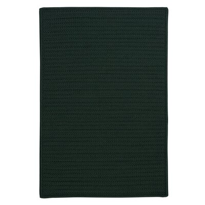 Gilmour Dark Green Solid Indoor/Outdoor Area Rug Rug Size: 10 x 13
