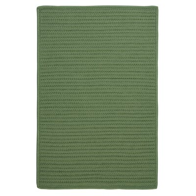 Gilmour Moss Green Solid Indoor/Outdoor Area Rug Rug Size: 10 x 13