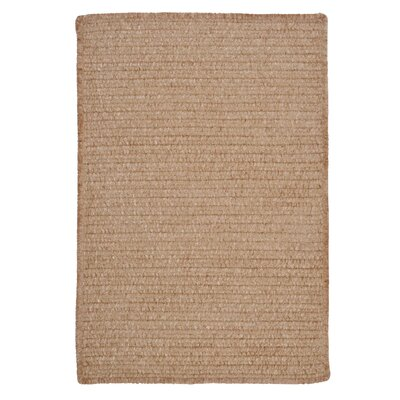 Gibbons Sand Bar Indoor/Outdoor Area Rug Rug Size: Rectangle 8 x 11