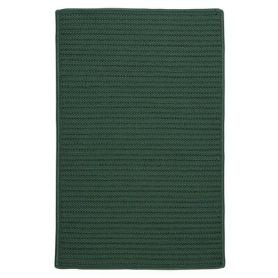 Glasgow Green Indoor/Outdoor Area Rug Rug Size: Runner 2' x 8'