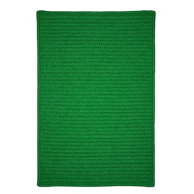 Glasgow Green Indoor/Outdoor Area Rug Rug Size: 2 x 4