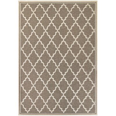 Cardwell Brown Indoor/Outdoor Area Rug Rug Size: Rectangle 53 x 76