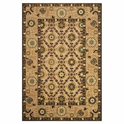 Cleghorn Rug Rug Size: Rectangle 76 x 106