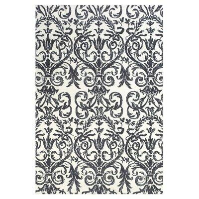 Cobden Slate / White Rug Rug Size: 36 x 56