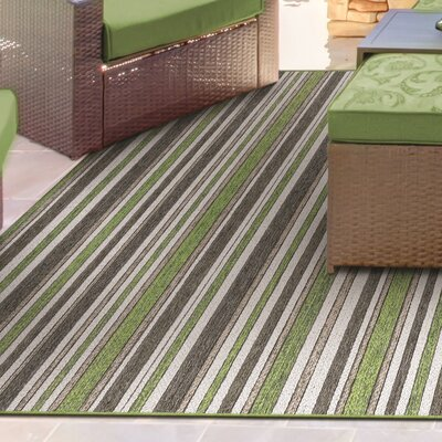 Watson Green/Brown Indoor/Outdoor Area Rug Rug Size: 53 x 76