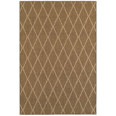 Carondelet Brown/Sand Indoor/Outdoor Area Rug Rug Size: Rectangle 52 x 76