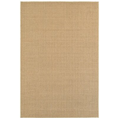 Carrow Beige Indoor/Outdoor Area Rug Rug Size: Rectangle 33 x 411