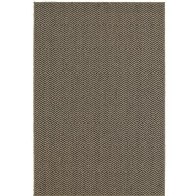 Carrow Gray Indoor/Outdoor Area Rug Rug Size: Rectangle 52 x 76