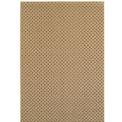 Carrow Brown Indoor/Outdoor Area Rug Rug Size: Rectangle 52 x 76