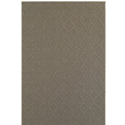 Carrow Gray Indoor/Outdoor Area Rug Rug Size: Rectangle 66 x 96