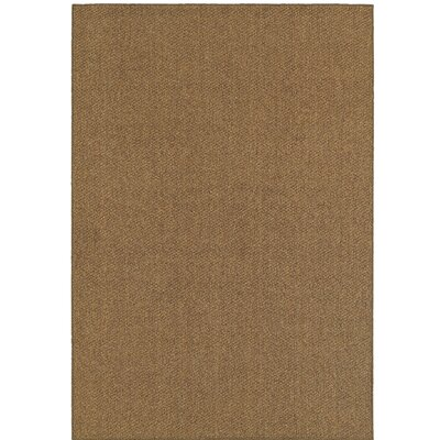 Carrow Brown Outdoor Area Rug Rug Size: Rectangle 52 x 76