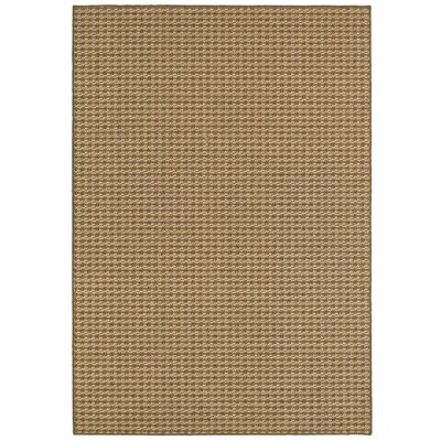 Carondelet Brown/Sand Outdoor Area Rug Rug Size: Rectangle 52 x 76