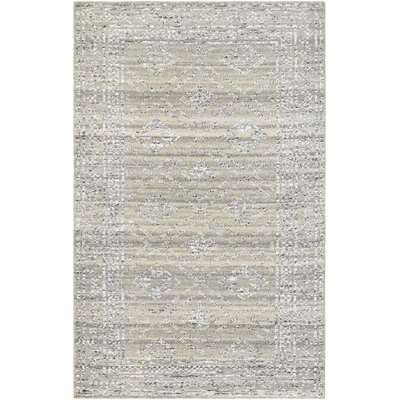 Cargile Hand-Knotted Gray Area Rug Rug Size: Rectangle 56 x 8