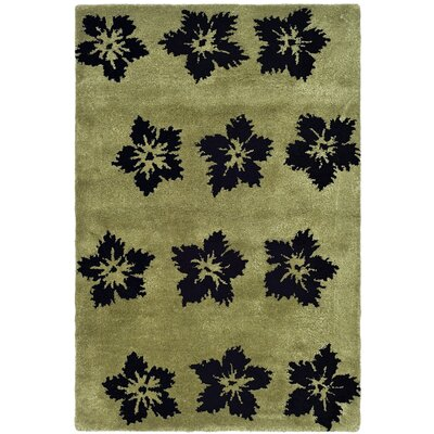 Alvan Sage/Black Area Rug Rug Size: Rectangle 2 x 3