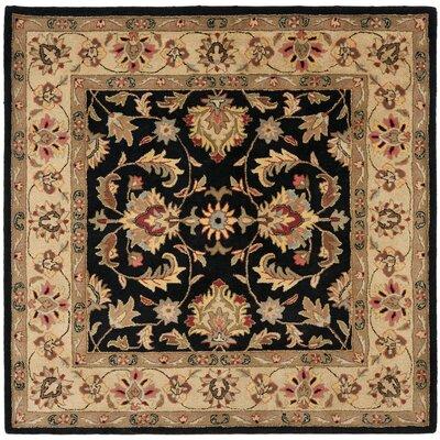 Cranmore Black Area Rug Rug Size: Square 6
